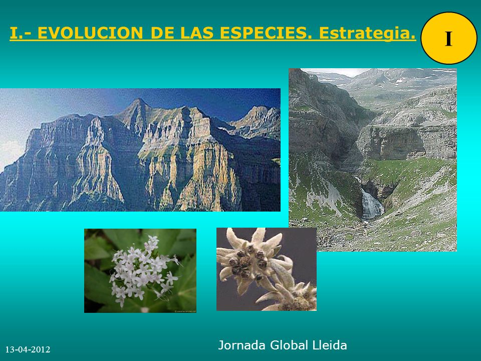 13-04-2012 Jornada Global Lleida I.- EVOLUCION DE LAS ESPECIES. Estrategia. I