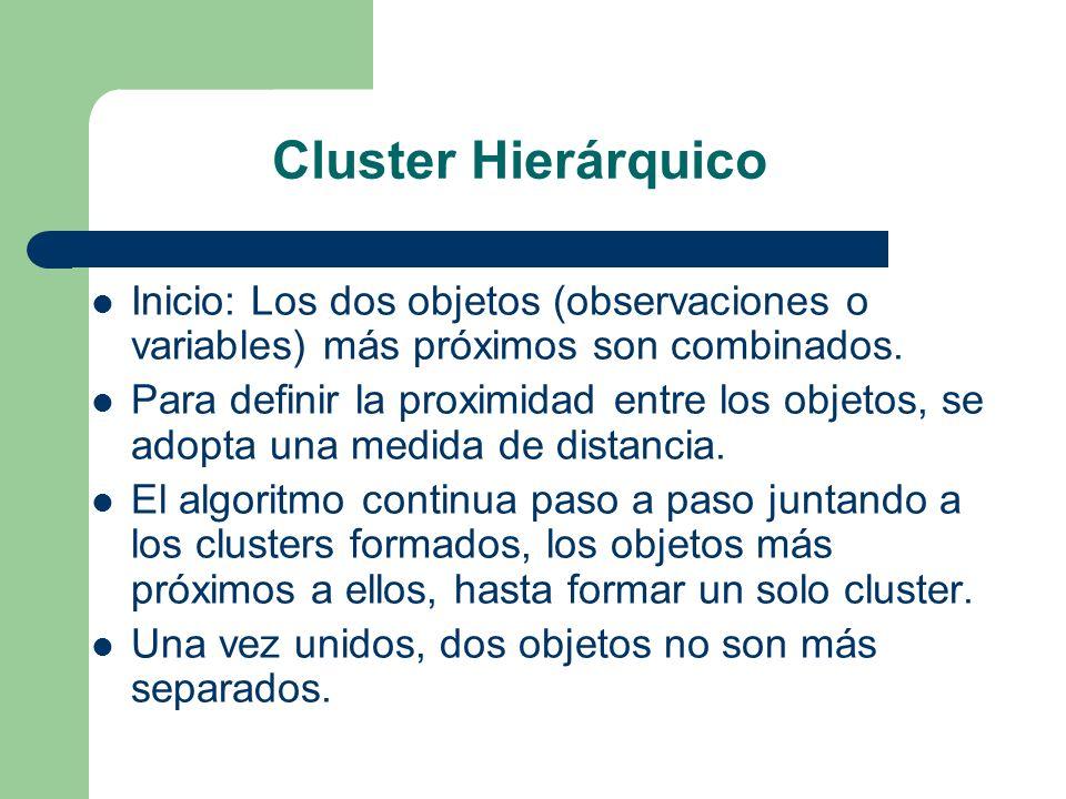 Cluster Hierárquico Inicio: Los dos objetos (observaciones o variables) más próximos son combinados. Para definir la proximidad entre los objetos, se