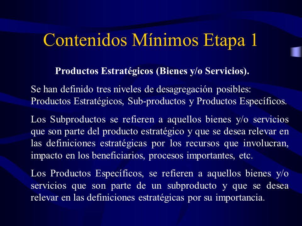 Productos Estratégicos (Bienes y/o Servicios). Se han definido tres niveles de desagregación posibles: Productos Estratégicos, Sub-productos y Product