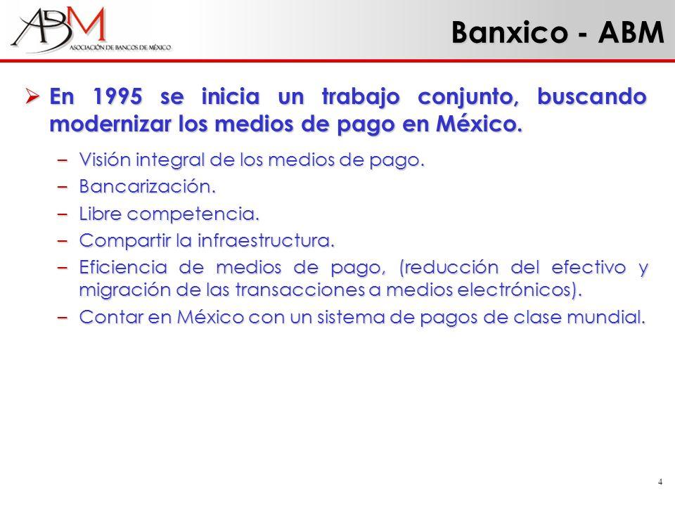 4 En 1995 se inicia un trabajo conjunto, buscando modernizar los medios de pago en México. En 1995 se inicia un trabajo conjunto, buscando modernizar