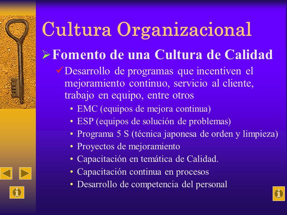 Cultura Organizacional Fomento de una Cultura de Calidad Desarrollo de programas que incentiven el mejoramiento continuo, servicio al cliente, trabajo