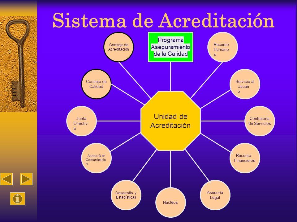 Sistema de Acreditación Consejo de Acreditación Consejo de Calidad Junta Directiv a Asesoría en Comunicació n Desarrollo y Estadísticas Recurso s Huma