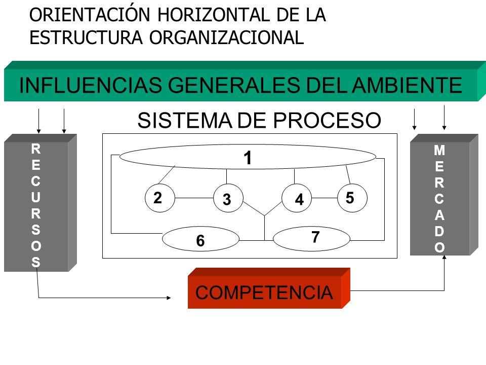 ORIENTACIÓN HORIZONTAL DE LA ESTRUCTURA ORGANIZACIONAL INFLUENCIAS GENERALES DEL AMBIENTE SISTEMA DE PROCESO 1 2 34 5 6 7 COMPETENCIA RECURSOSRECURSOS