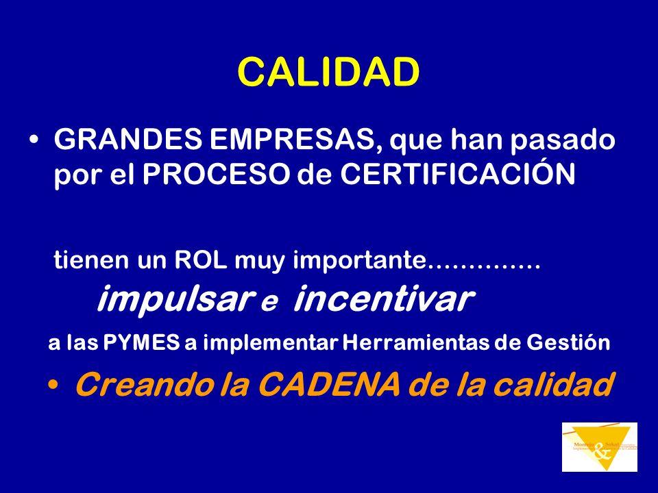 CALIDAD GRANDES EMPRESAS, que han pasado por el PROCESO de CERTIFICACIÓN tienen un ROL muy importante.............. impulsar e incentivar a las PYMES