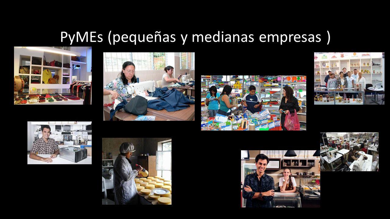 PyMEs (pequeñas y medianas empresas )