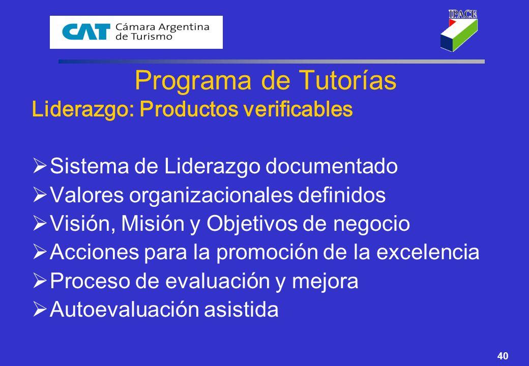 40 Programa de Tutorías Liderazgo: Productos verificables Sistema de Liderazgo documentado Valores organizacionales definidos Visión, Misión y Objetiv