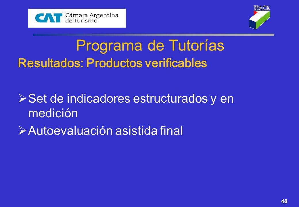 46 Programa de Tutorías Resultados: Productos verificables Set de indicadores estructurados y en medición Autoevaluación asistida final