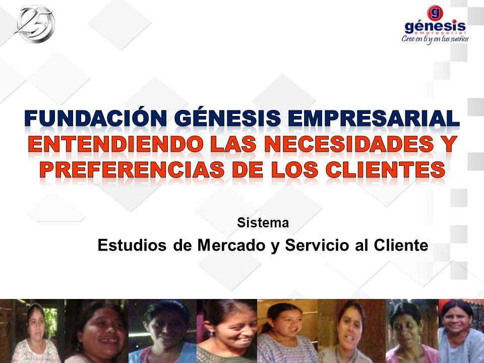Sistema Estudios de Mercado y Servicio al Cliente
