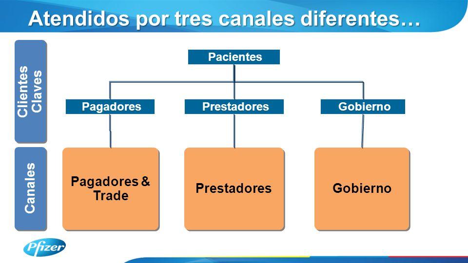 Clientes Claves Canales Pagadores & Trade Pagadores & Trade Atendidos por tres canales diferentes… Prestadores Gobierno Pacientes Gobierno Pagadores Prestadores