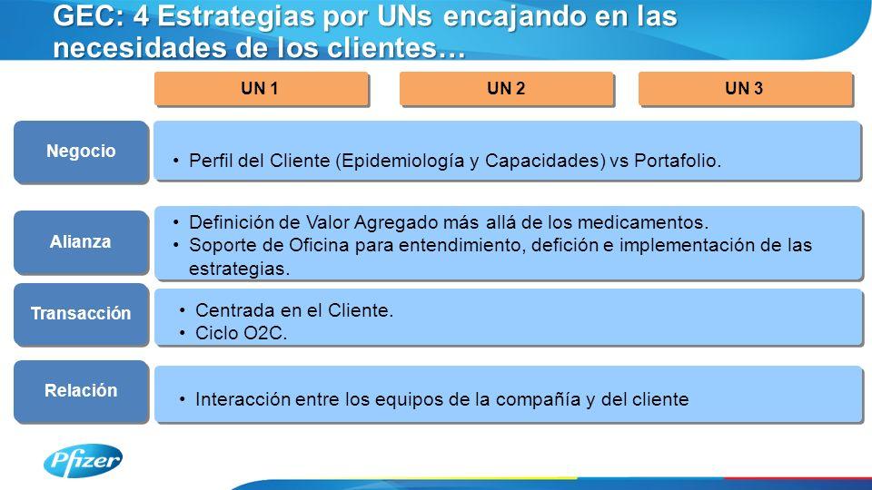 GEC: 4 Estrategias por UNs encajando en las necesidades de los clientes… UN 1 UN 2 UN 3 Perfil del Cliente (Epidemiología y Capacidades) vs Portafolio