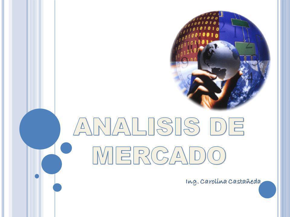 Ing. Carolina Castañeda