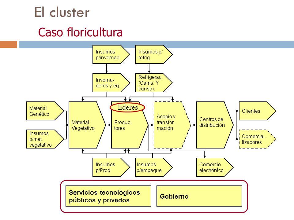 El cluster Caso floricultura Material Genético Insumos p/mat. vegetativo Material Vegetativo Produc- tores Acopio y transfor- mación Centros de distri