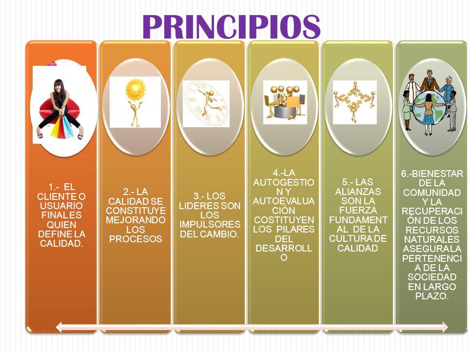 Estructura de los Criterios y Subcriterios Los seis Criterios del Modelo de Dirección por Calidad están integrados por Subcriterios que solicitan de manera específica las características de calidad deseables en los sistemas y procesos de trabajo.
