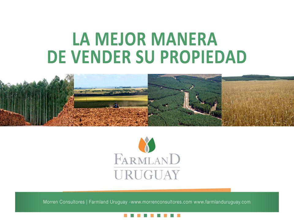 El mejor acceso en Uruguay a potenciales compradores extranjeros, principalmente de Europa y América del Norte.