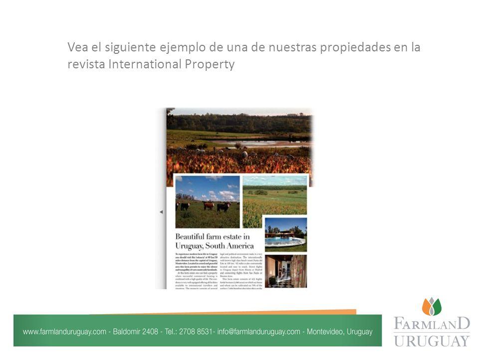 Vea el siguiente ejemplo de una de nuestras propiedades en la revista International Property