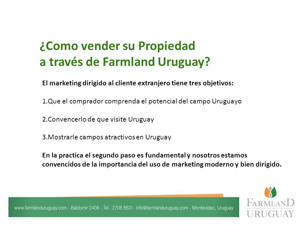 Brochures atractivos y profesionales de su propiedad a nivel de conocimiento y interés del potencial comprador extranjero.