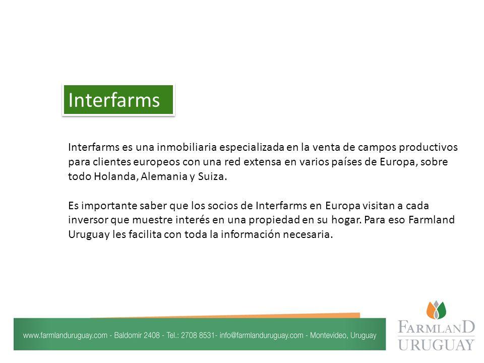 Interfarms es una inmobiliaria especializada en la venta de campos productivos para clientes europeos con una red extensa en varios países de Europa, sobre todo Holanda, Alemania y Suiza.