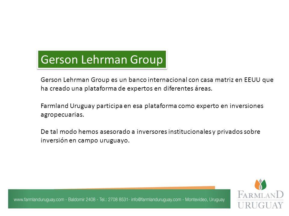 Gerson Lehrman Group es un banco internacional con casa matriz en EEUU que ha creado una plataforma de expertos en diferentes áreas.