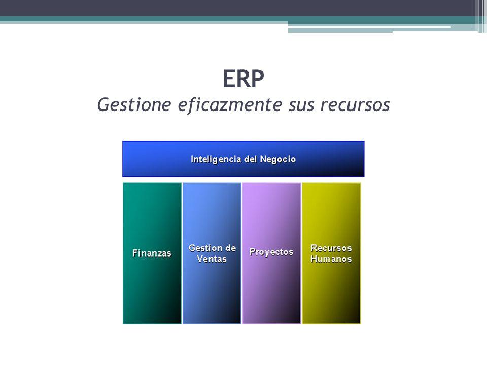 ERP Gestione eficazmente sus recursos
