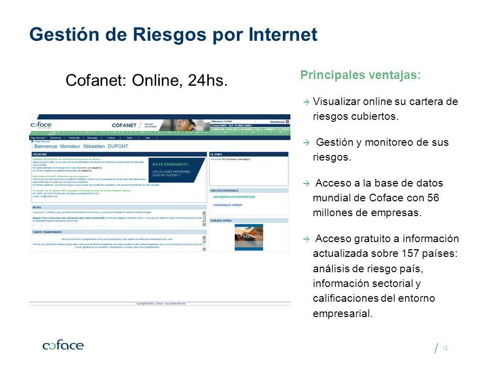 / 12 Gestión de Riesgos por Internet Principales ventajas: Visualizar online su cartera de riesgos cubiertos. Gestión y monitoreo de sus riesgos. Acce