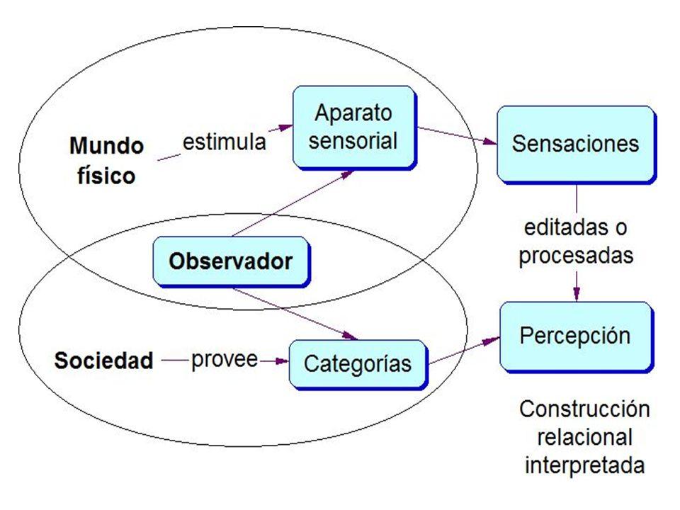 La percepción contiene menos información de la que puede extraerse del mundo físico y a la vez más información.