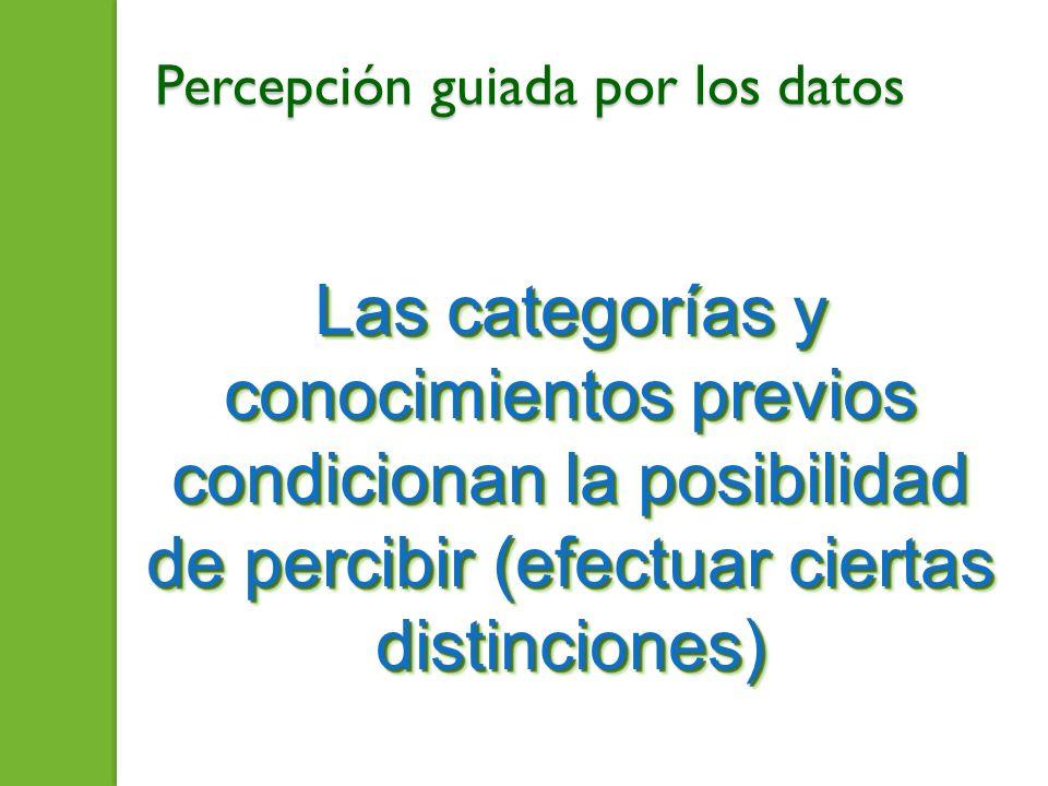 Percepción guiada por los datos Las categorías y conocimientos previos condicionan la posibilidad de percibir (efectuar ciertas distinciones)