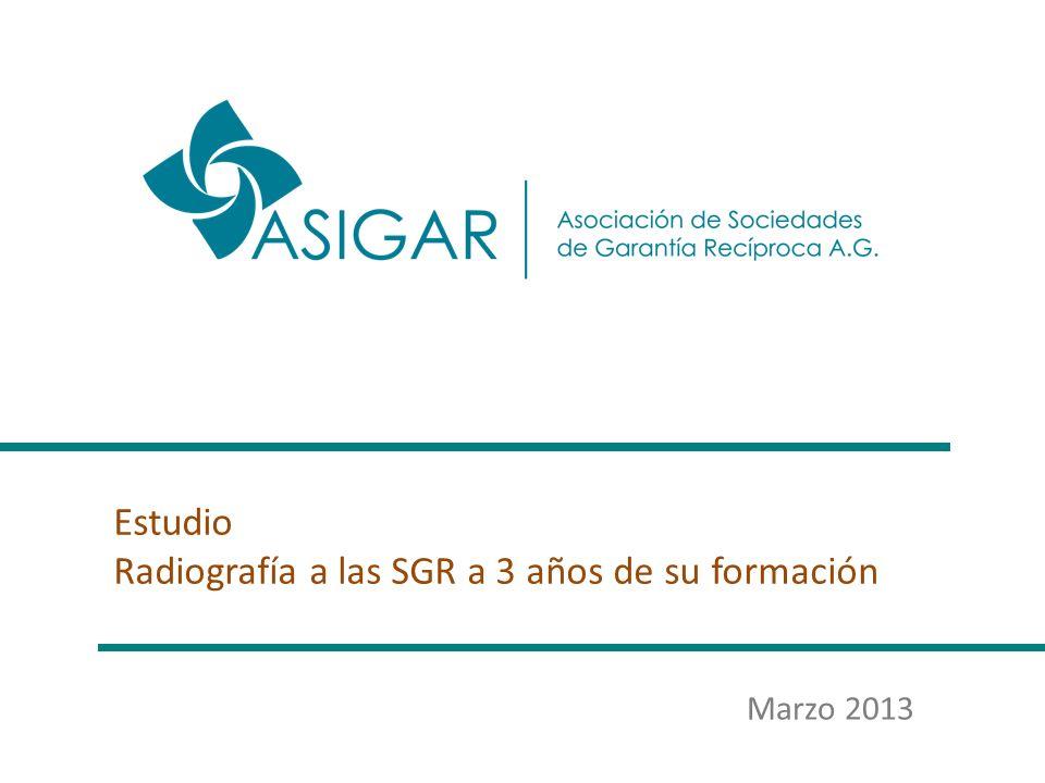 Estudio Radiografía a las SGR a 3 años de su formación Marzo 2013
