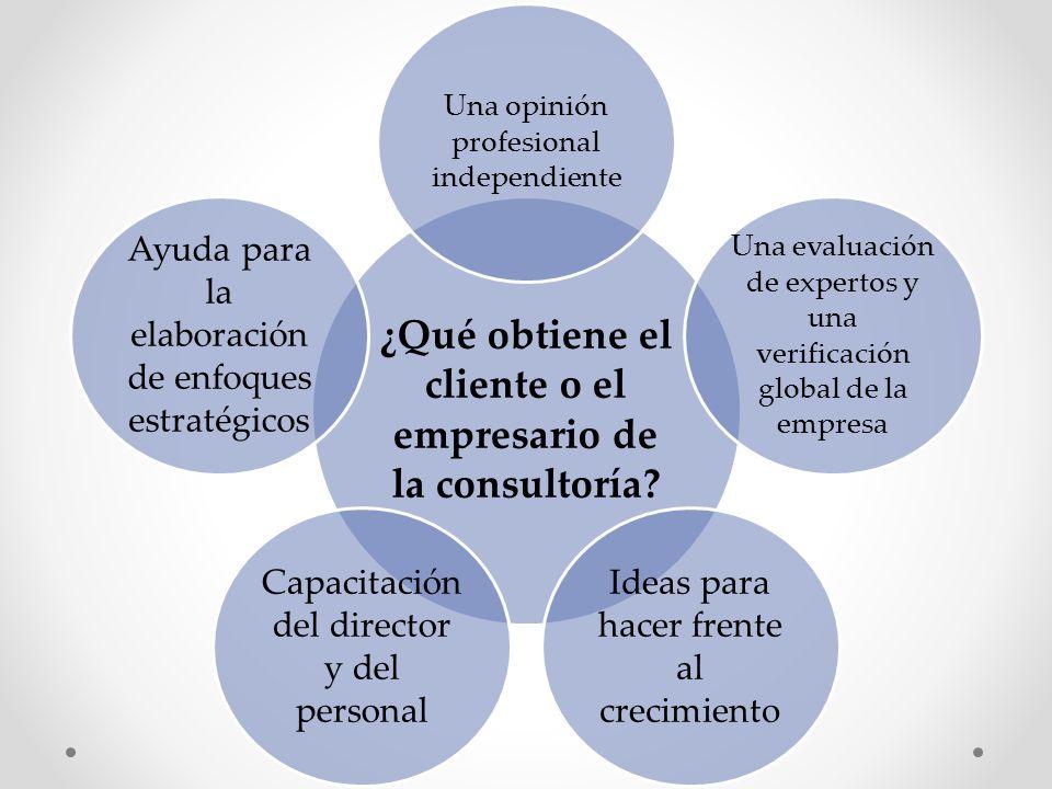 ¿Qué obtiene el cliente o el empresario de la consultoría? Una opinión profesional independiente Una evaluación de expertos y una verificación global