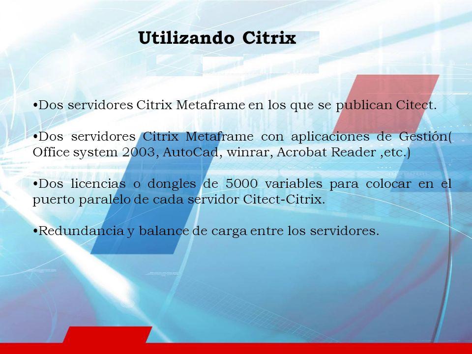 Dos servidores Citrix Metaframe en los que se publican Citect.