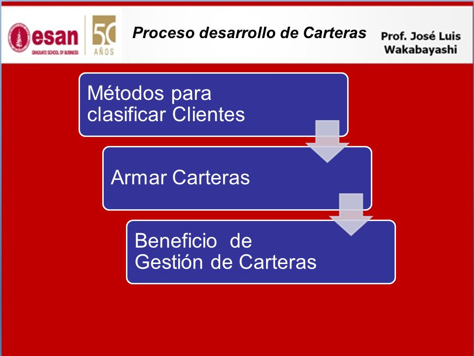 Proceso desarrollo de Carteras