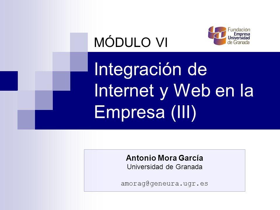 Integración de Internet y Web en la Empresa (III) MÓDULO VI Antonio Mora García Universidad de Granada amorag@geneura.ugr.es