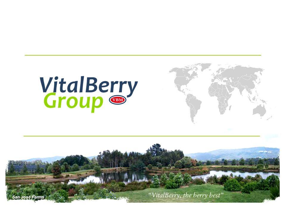 Programa de breeding de primer nivel Nuestro programa de breeding de berries se está desarrollando en Chile, México, EE.UU.
