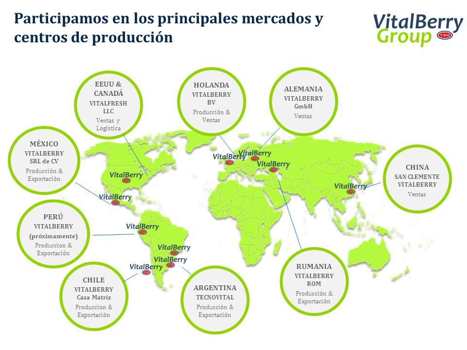 Participamos en los principales mercados y centros de producción CHILE VITALBERRY Casa Matriz Produccion & Exportación ARGENTINA TECNOVITAL Producción