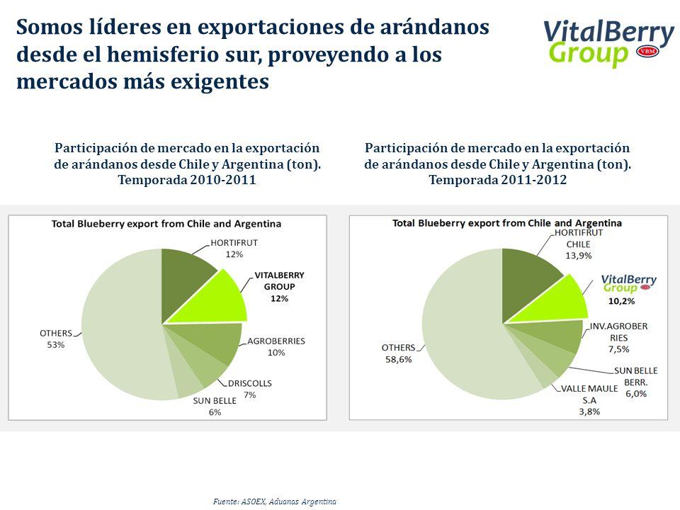 Participación de mercado en la exportación de arándanos desde Chile y Argentina (ton). Temporada 2011-2012 Participación de mercado en la exportación