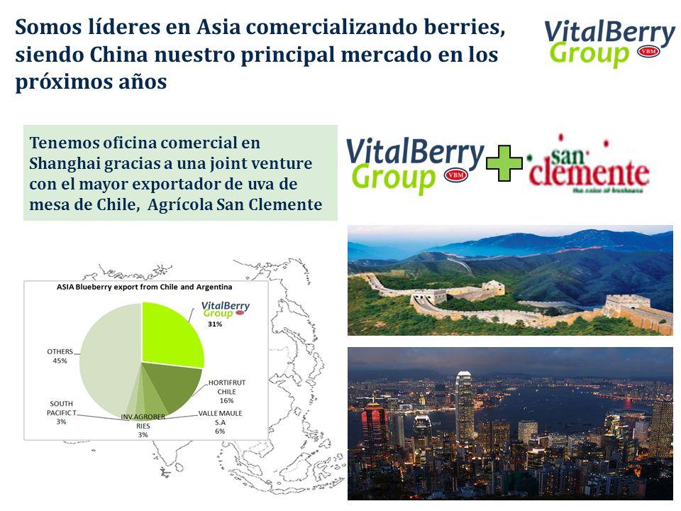Somos líderes en Asia comercializando berries, siendo China nuestro principal mercado en los próximos años Tenemos oficina comercial en Shanghai graci