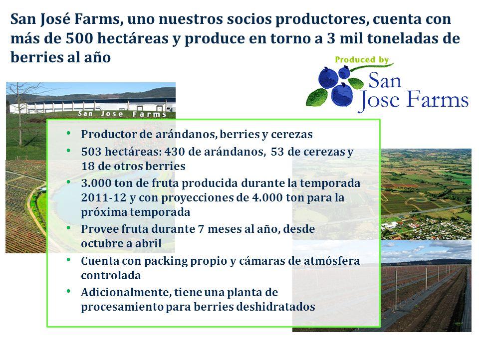 San José Farms, uno nuestros socios productores, cuenta con más de 500 hectáreas y produce en torno a 3 mil toneladas de berries al año Productor de a