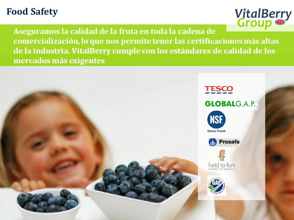 Food Safety Aseguramos la calidad de la fruta en toda la cadena de comercialización, lo que nos permite tener las certificaciones más altas de la indu