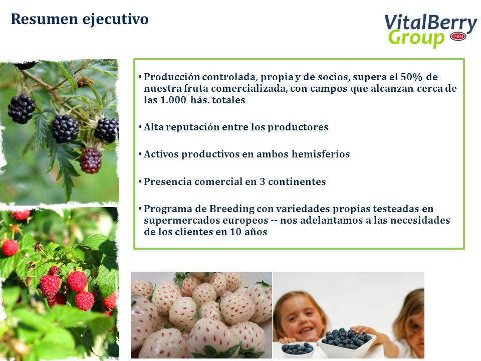 Resumen ejecutivo Producción controlada, propia y de socios, supera el 50% de nuestra fruta comercializada, con campos que alcanzan cerca de las 1.000