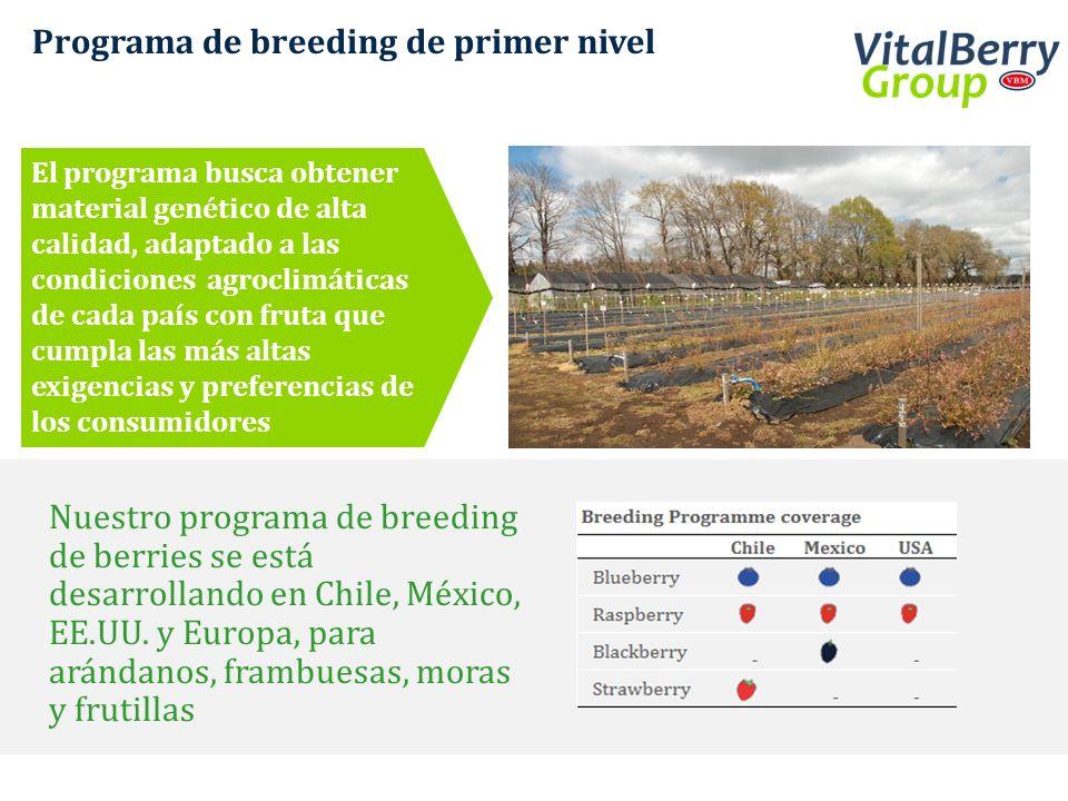 Programa de breeding de primer nivel Nuestro programa de breeding de berries se está desarrollando en Chile, México, EE.UU. y Europa, para arándanos,