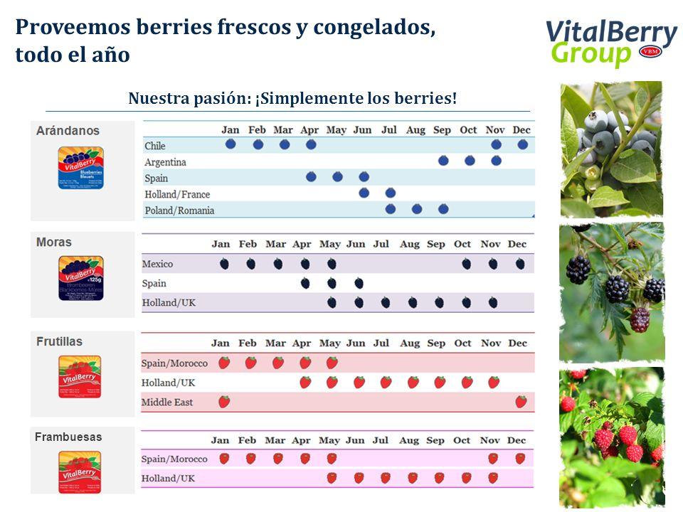 Proveemos berries frescos y congelados, todo el año Nuestra pasión: ¡Simplemente los berries! Frambuesas