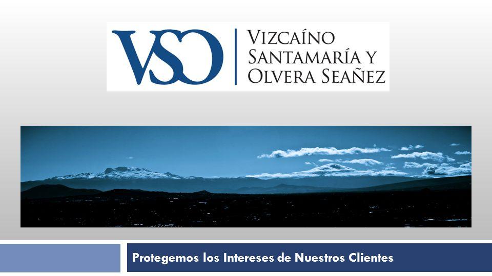 Visión 1.Vizcaíno, Santamaría y Olvera Seañez, S.C.