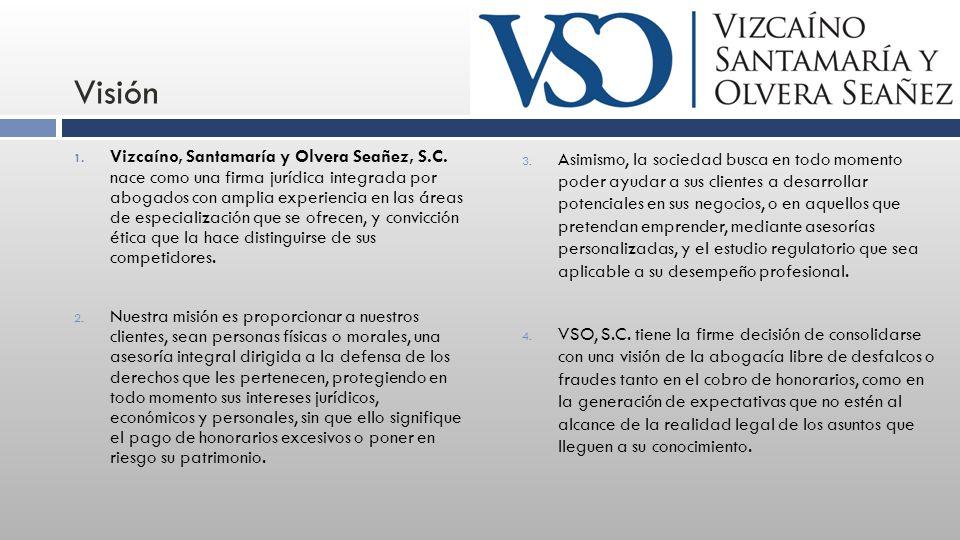 Visión 1. Vizcaíno, Santamaría y Olvera Seañez, S.C.