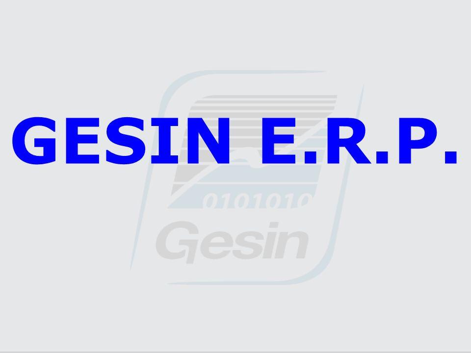 GESIN E.R.P.