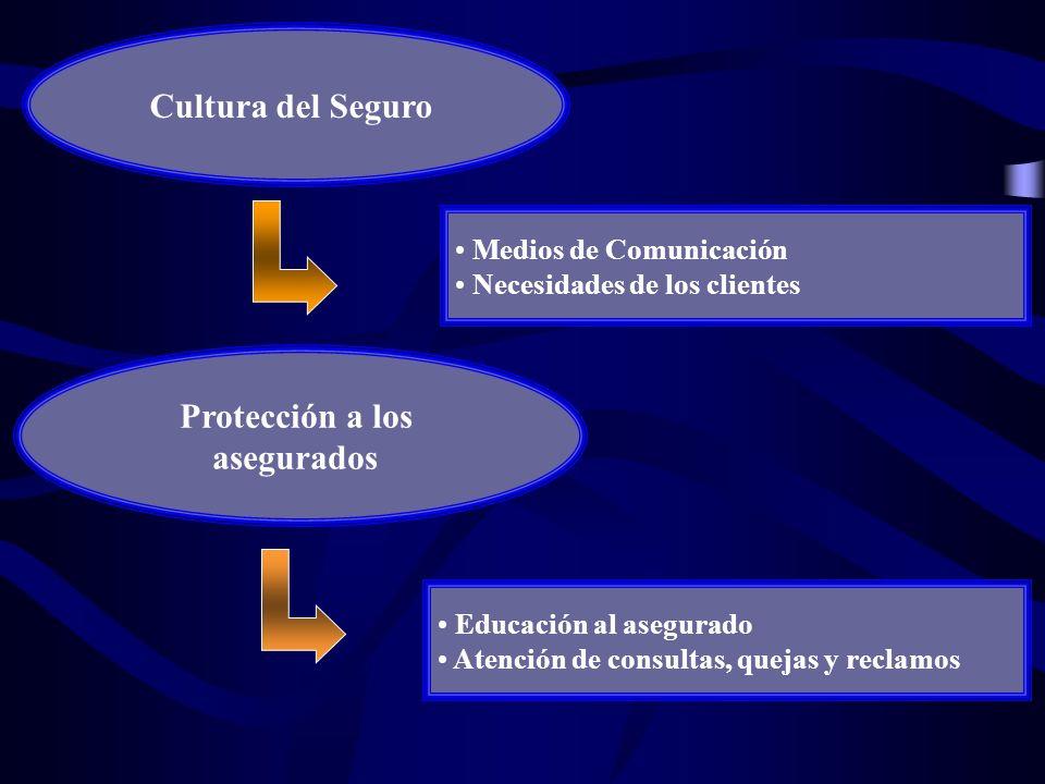 Cultura del Seguro Protección a los asegurados Medios de Comunicación Necesidades de los clientes Educación al asegurado Atención de consultas, quejas