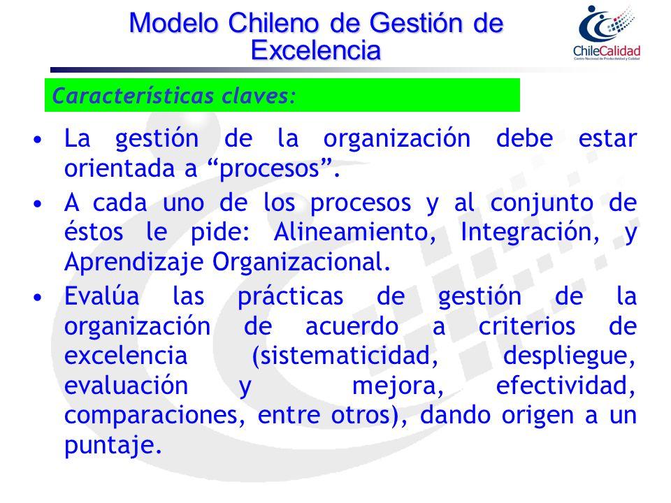 Características claves: La gestión de la organización debe estar orientada a procesos. A cada uno de los procesos y al conjunto de éstos le pide: Alin