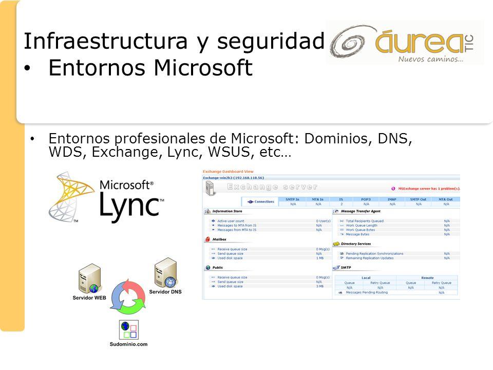 Entornos profesionales de Microsoft: Dominios, DNS, WDS, Exchange, Lync, WSUS, etc… Infraestructura y seguridad Entornos Microsoft