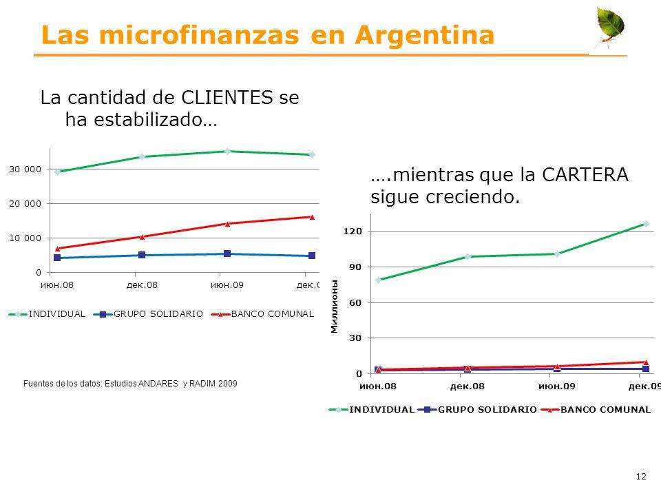 Las microfinanzas en Argentina La cantidad de CLIENTES se ha estabilizado… 12 ….mientras que la CARTERA sigue creciendo. Fuentes de los datos: Estudio