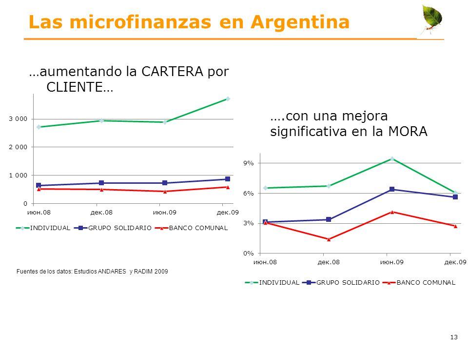 Las microfinanzas en Argentina …aumentando la CARTERA por CLIENTE… 13 ….con una mejora significativa en la MORA Fuentes de los datos: Estudios ANDARES