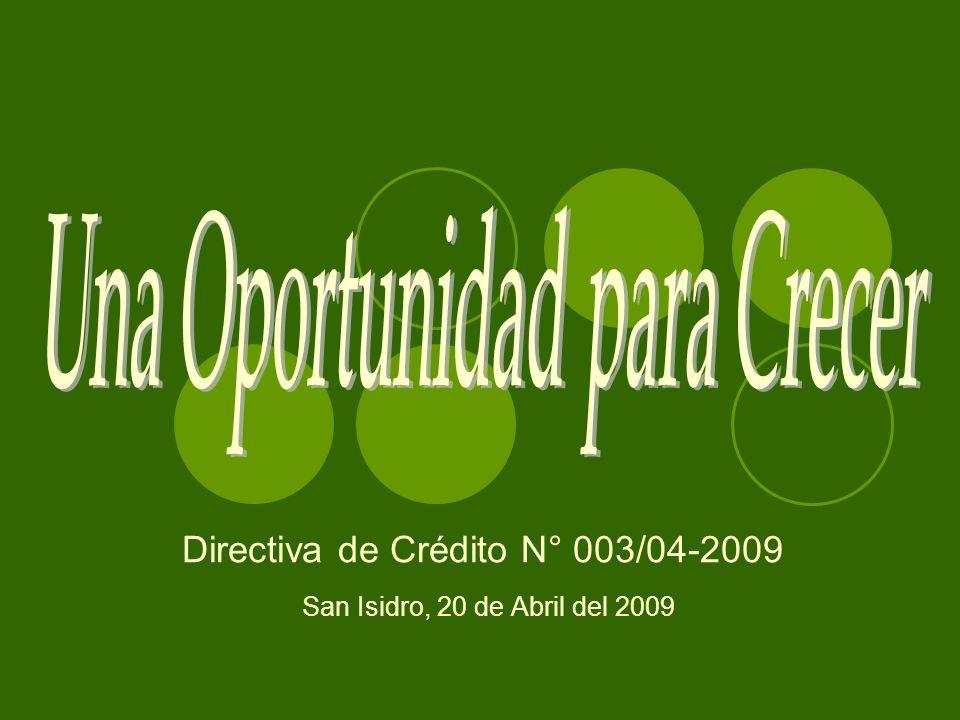 Directiva de Crédito N° 003/04-2009 San Isidro, 20 de Abril del 2009