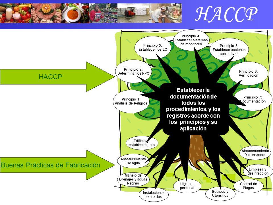 Buenas Prácticas de Fabricación HACCP Edificio y establecimiento Abastecimiento De agua Manejo de Drenajes y aguas Negras Higiene personal Equipos y U